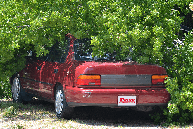 Red car underneath a tree branch from storm