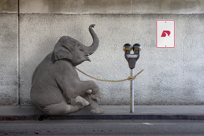Elephant secured by rope to a parking meter