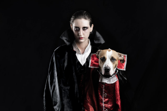 Dog and human dressed in matching halloween costumes