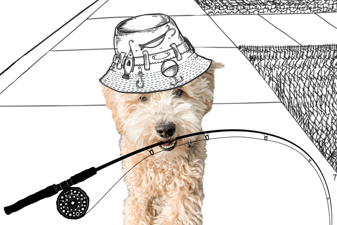 Dog with fishing rod in mouth and hat